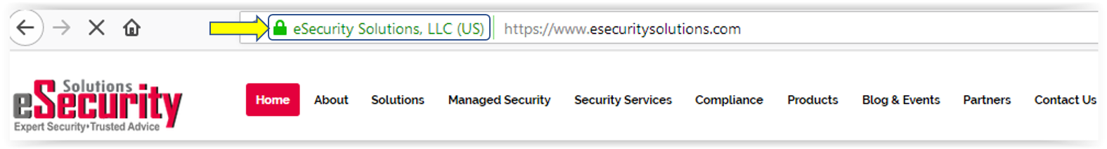 Best Looking Website Security, HTTPS Everywhere