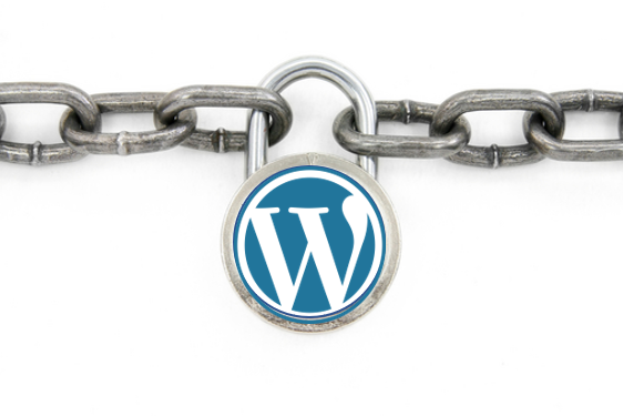 WordPress Security, Website Security
