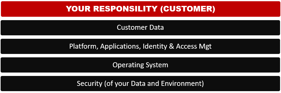 Shared Responsibility Model - Customer's Security Responsibility - for AWS security, Azure Security, Cloud Data Center Security